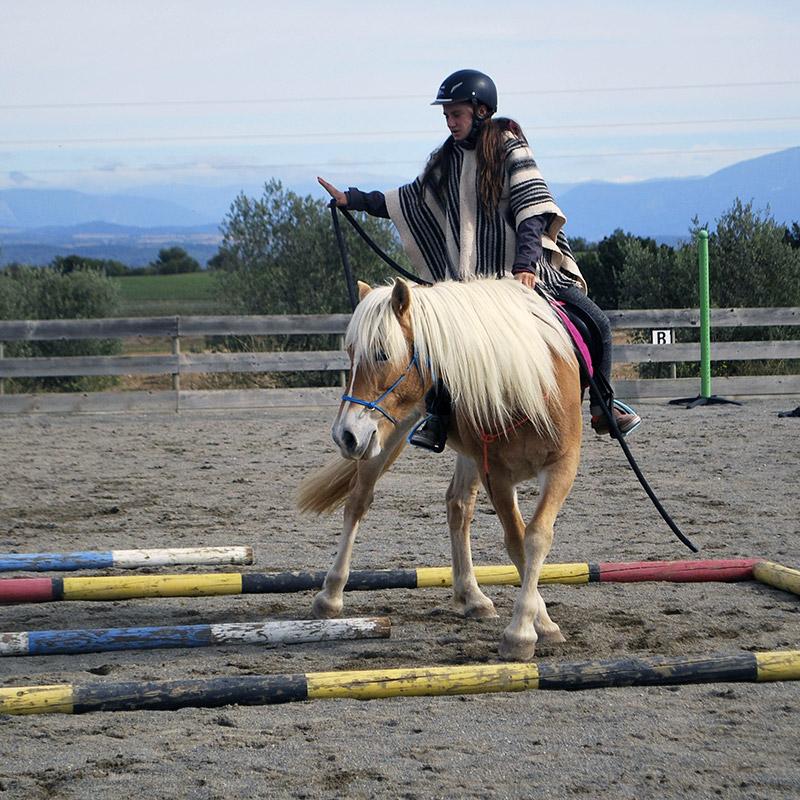 Rubis et Laïla en équitation éthologique